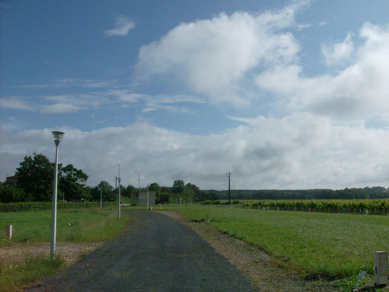Terrain b tir sur la commune de migron ref ts maisons for Terrain a batir